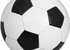Football: victime de racisme, le Malien Marega quitte le terrain avec fracas
