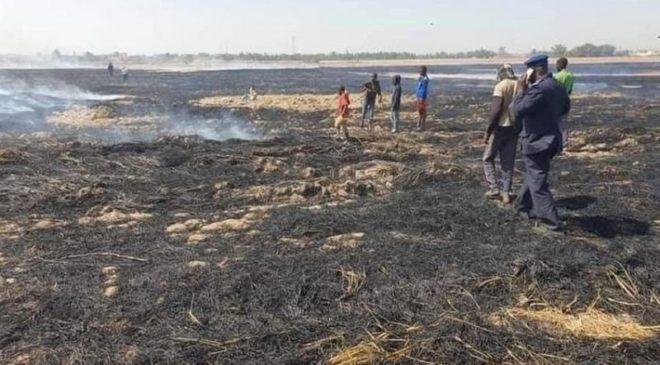 Commune rurale de Dogofry : Des djihadistes mettent, à nouveau, le feu à des champs de riz !