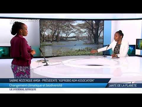 Le Journal Afrique du dimanche 17 janvier 2021