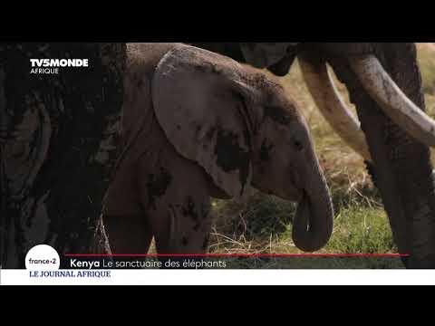 Le Journal Afrique du samedi 06 mars 2021